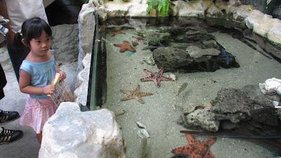 Manila Ocean Park: Oceanarium [April 2010] 6