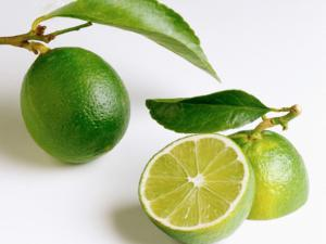 Diet Jeruk Nipis, Cara Mudah Turunkan Berat Badan Secara Alami