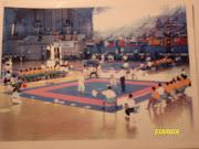 Pre torneo Mundial de Karate y Kobudo Okinawense