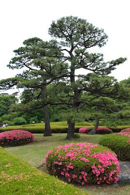 poza gradina romantica japoneza