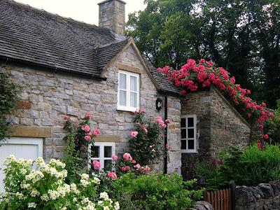poza gradina romantica cu trandafiri