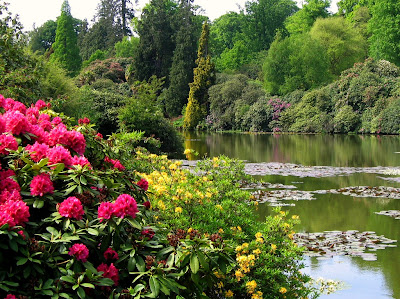 florile si apa elemente in gradina romantica