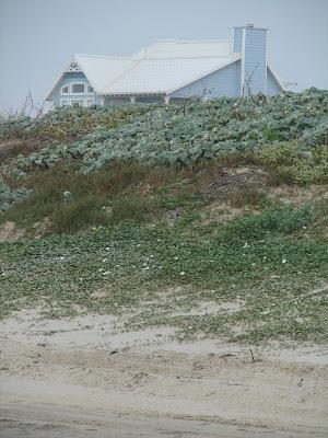 Family Beaches in Texas,Crystal Beach Texas,Corpus Christi Texas,Beaches Near Texas,bThings to Do in Texas