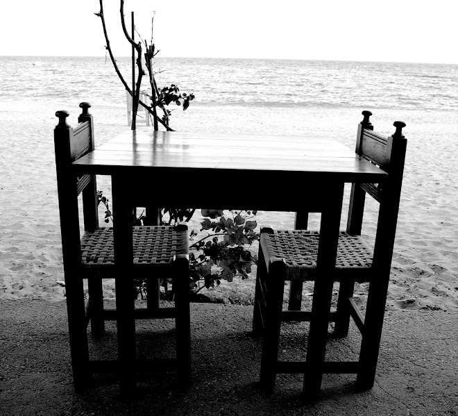 cuando volvamos...el mar nos estará esperando.