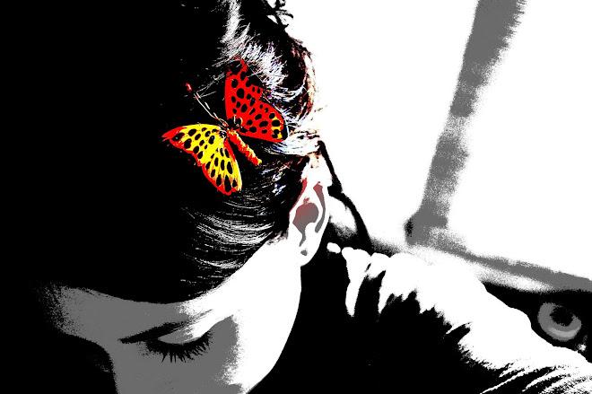Vuela mariposa...vuela!