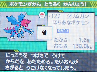 Kurimugan, the Ski-Mask Dragon Pokemon.