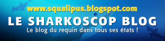 www.squalipus.blogspot.com