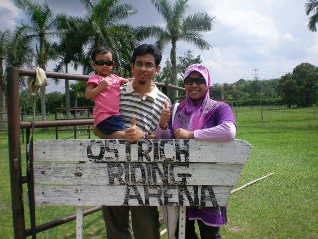 Ostrich Farm Malaysia Ostrich Farm in Malaysia