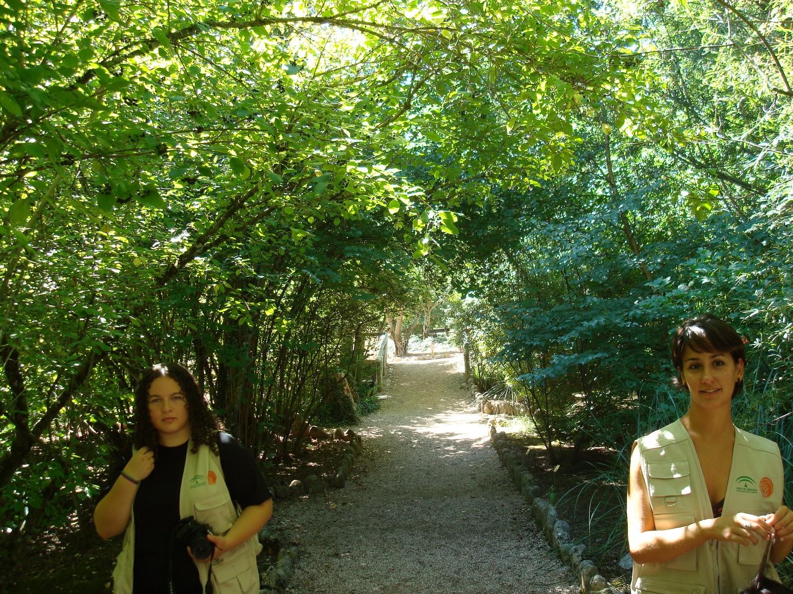 El rinc n del sherpa jardines bot nicos de andaluc a - Jardines de andalucia ...