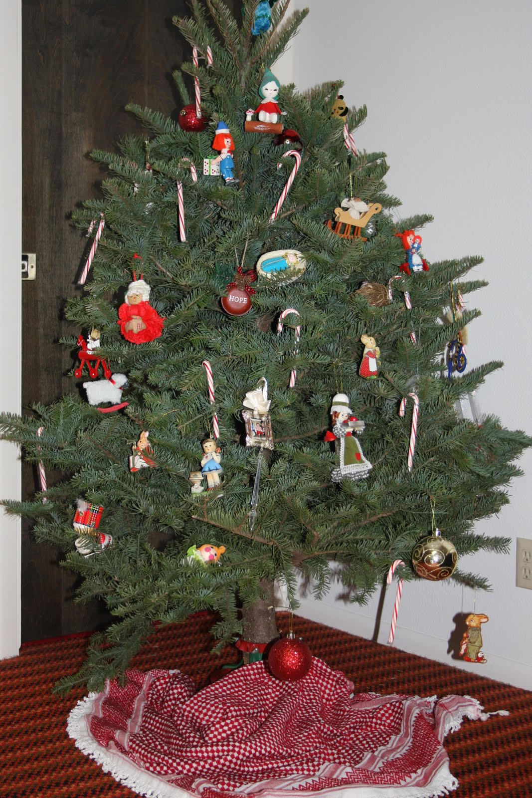 after writing my post about a tree less christmas a dear and thoughtful friend called to ask if she could bring us a live christmas tree sure - What Is The Day After Christmas Called