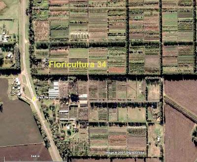 Floricultura 34 mar del plata y la actividad hort cola for Viveros en la plata