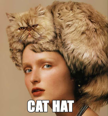 cat in hat hat. cat in hat images. quot;I