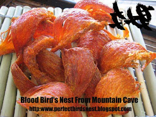 山血燕窝  MOUNTAIN BLOOD BIRD'S NEST