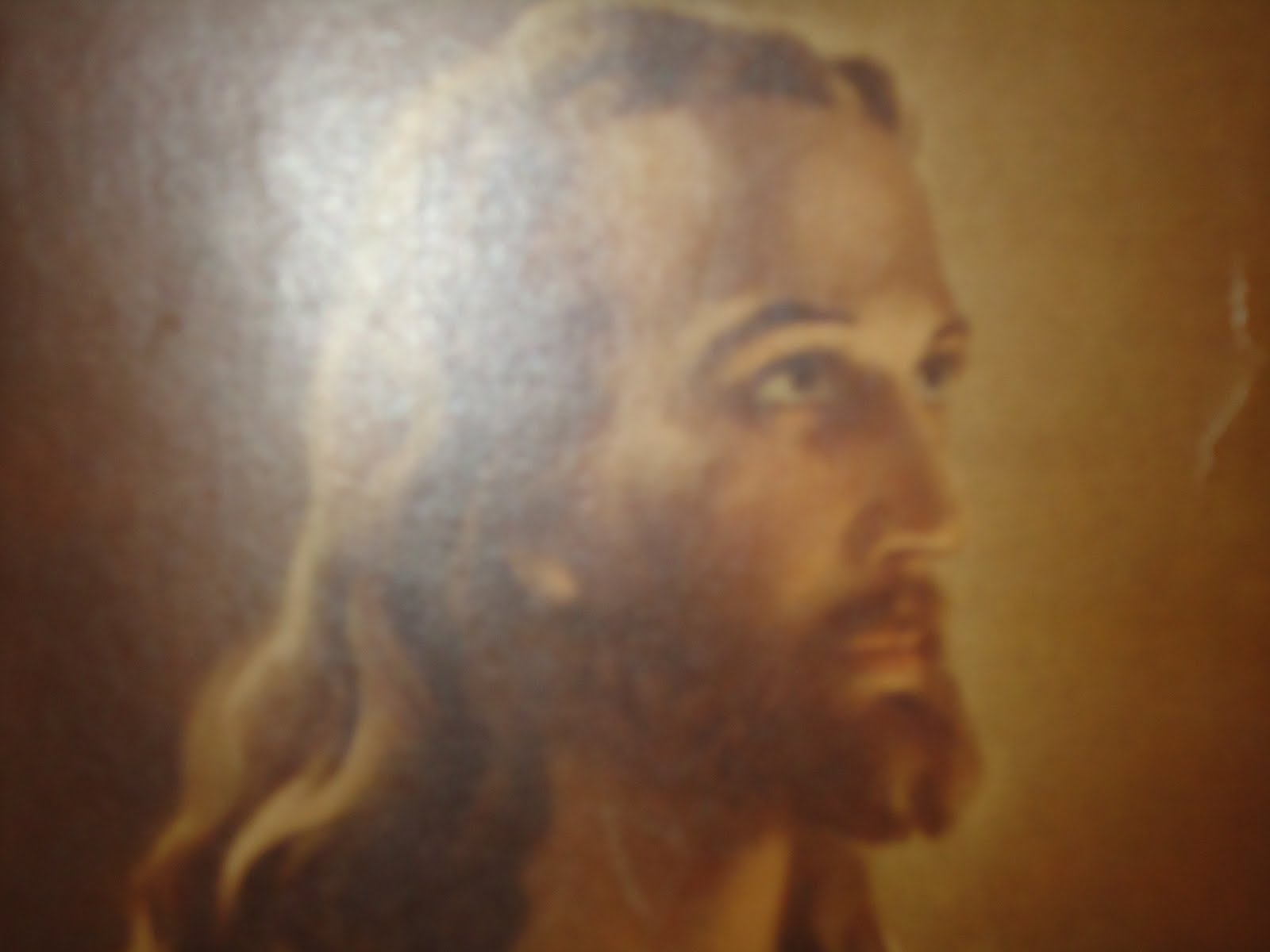 of life and the life of jesus christ