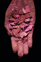 BeautyPowder Amb S New from MAC: Beauty Powder Blush