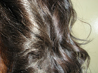 Daneen's Darker Do   Courtesy of Celeb Colorist, Jason Backe!