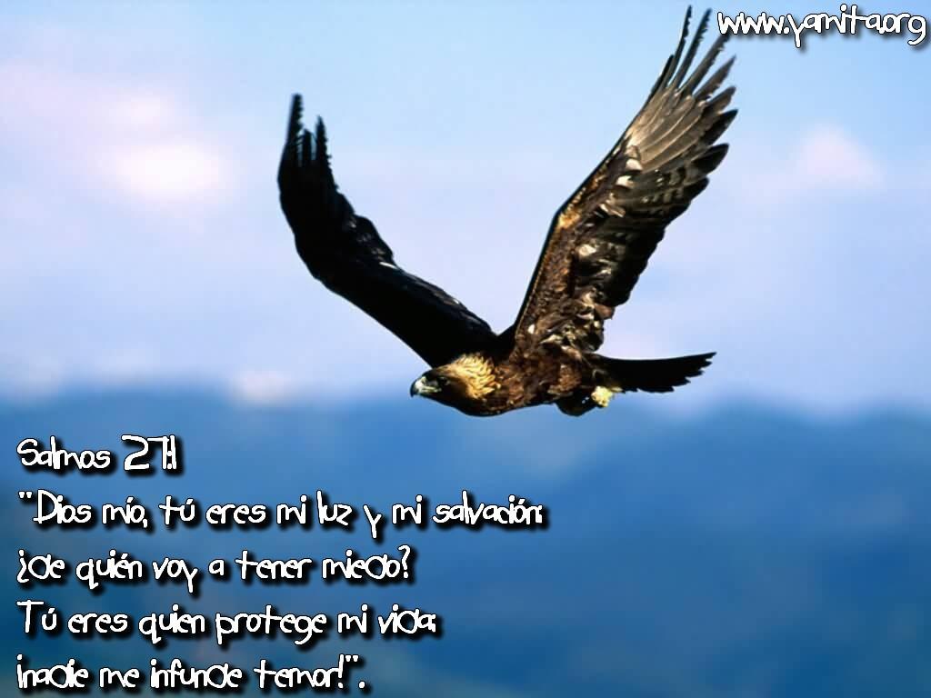 http://4.bp.blogspot.com/_V8d23rvX1wg/TIhNjGAaxnI/AAAAAAAAAek/nFLZiVp40PI/s1600/Dios+m%25C3%25ADo%252C+t%25C3%25BA+eres+mi+luz+y+mi+salvaci%25C3%25B3n.jpg