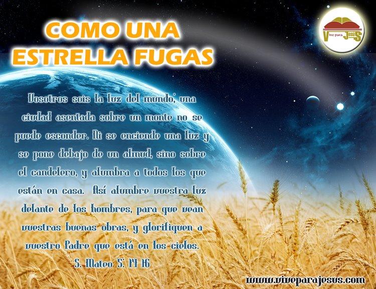 Poemas Para El Facebook Por El Dia Del Campesinos | MEJOR CONJUNTO DE