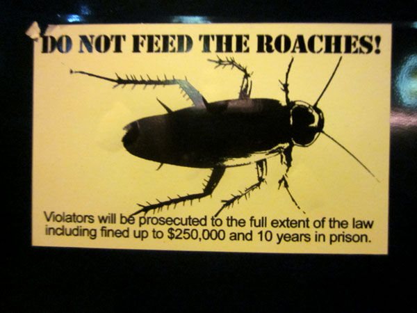 also, don't smoke this roach