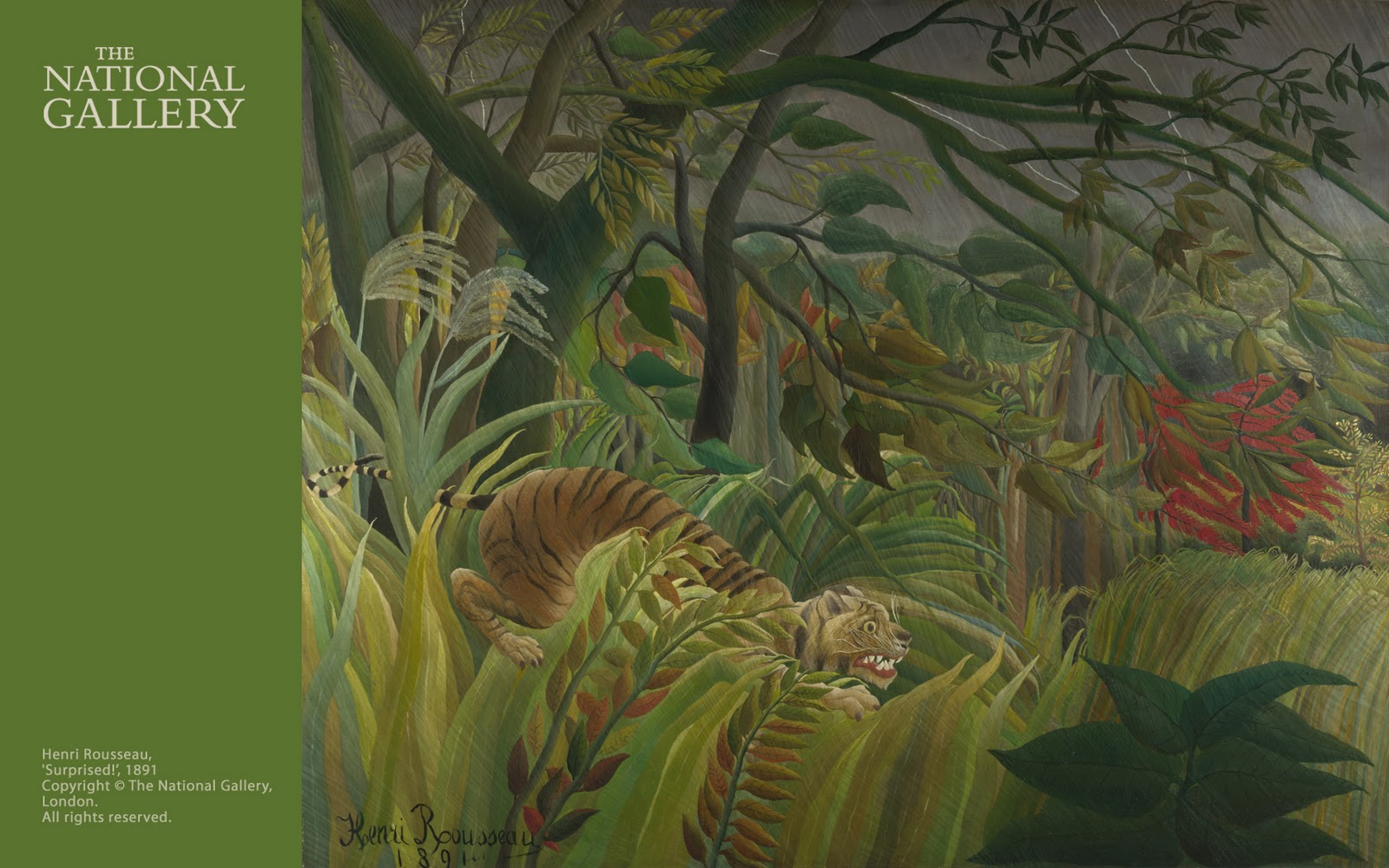 Gallery Wallpaper Download