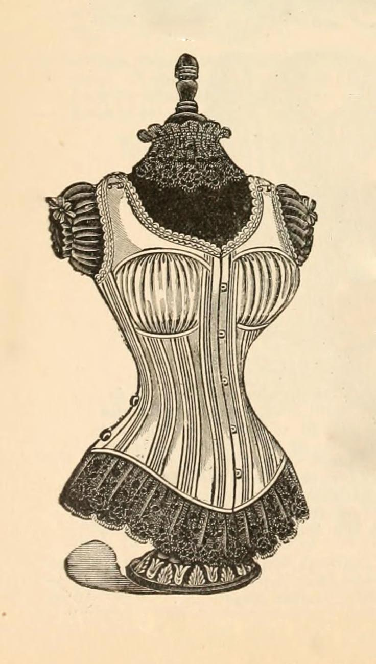 Vintage Ephemera: Engraved illustration, corset and ...