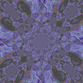 2WCD081C(960pic'x-960pic'x).jpg