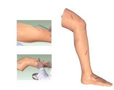 Suturing Leg