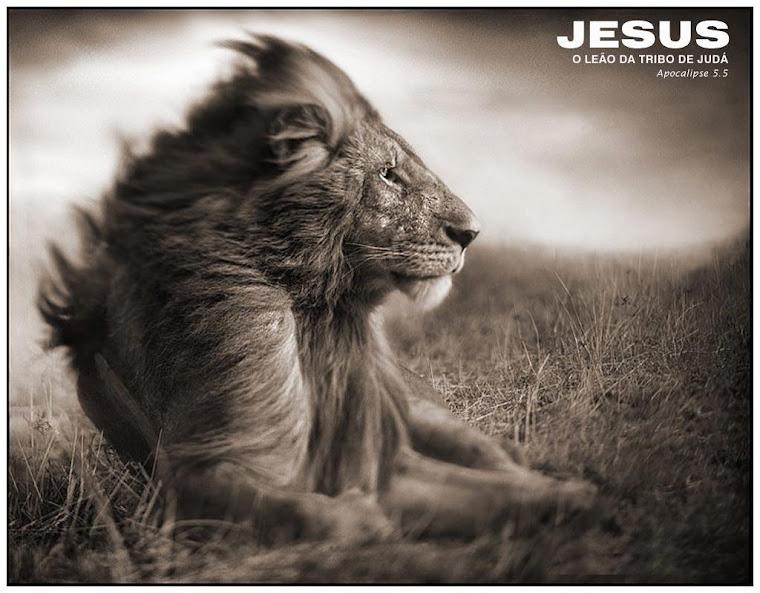 Banda Leão de Judá | Pregar e Louvar até Jesus Regressar
