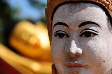 Anche le moderne pagode offrono affascinanti sorprese