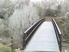 criterium bridge