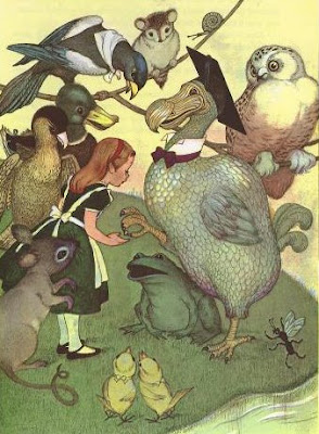 Alice in Wonderland, La course au Caucus, dodo, Marjorie Torrey