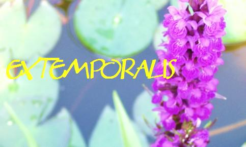 Extemporalis
