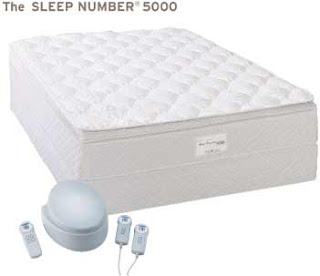 Sleep Number Bed