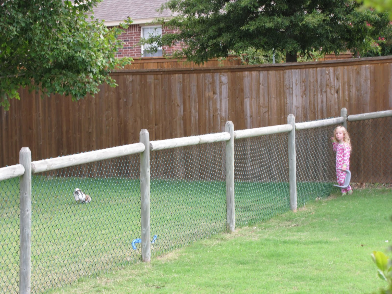 go back gallery for dog fence ideas