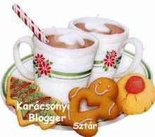 Karácsonyi blogger díj!!