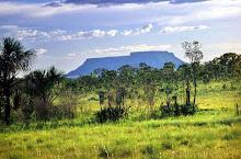 JALAPÃO - Cerrado brasileiro