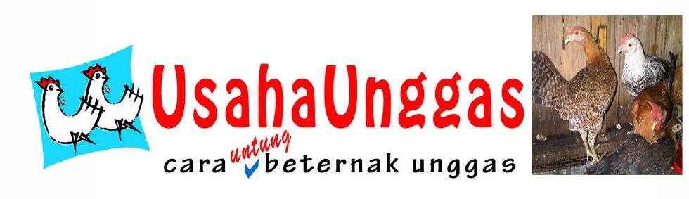 Usaha Unggas
