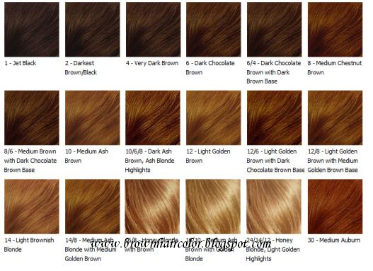 Brown Hair Colour Chart