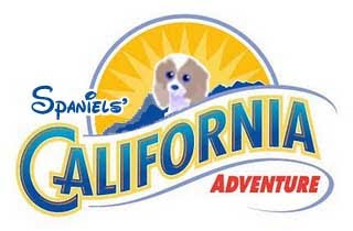 Spaniels California Adventure