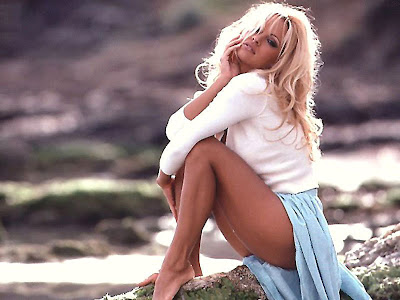 Hot Sexy Pamela Anderson Photo Gallery