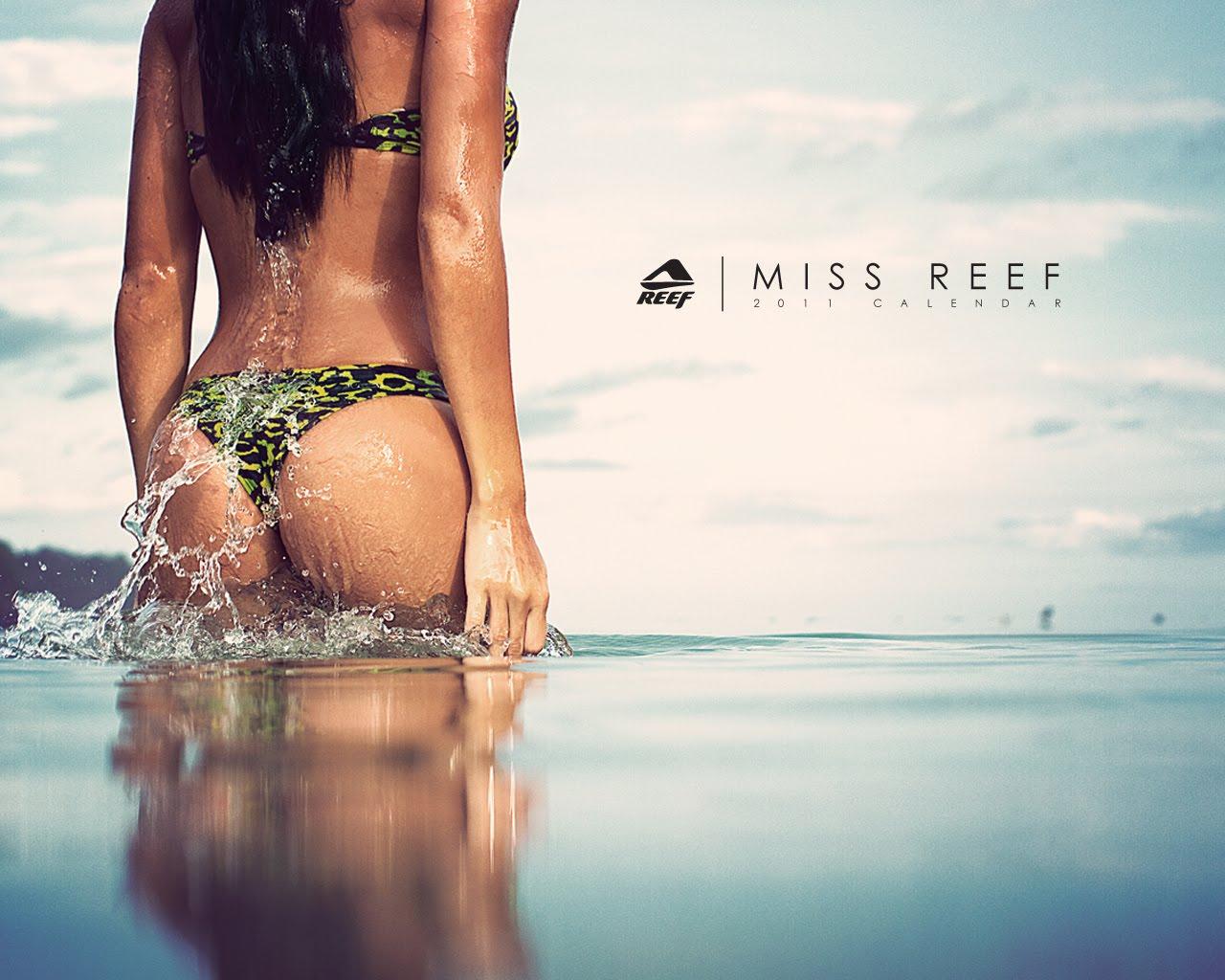 Calendrier Miss Reef 2011 Disponible Au Shop Licious Bodyboard Shop