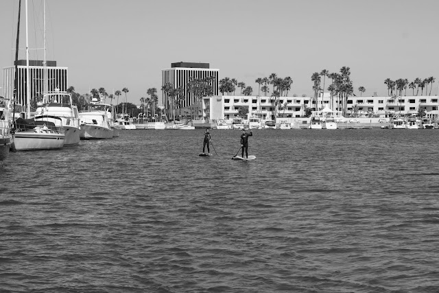 surfing marina del rey los angeles