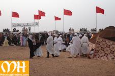 festival gnawa