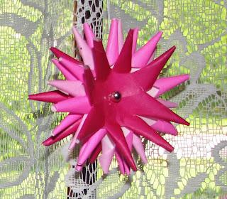 porcupine ball flower
