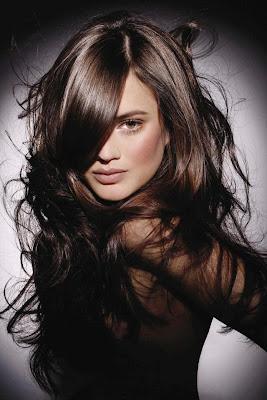 Style Hair,stylist company