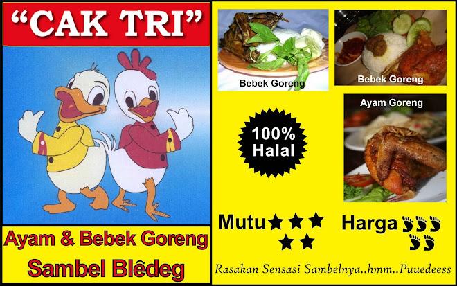 "Ayam & Bebek Goreng Sambel Bledeg ""Cak Tri"""
