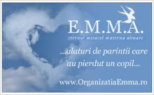 E.M.M.A.