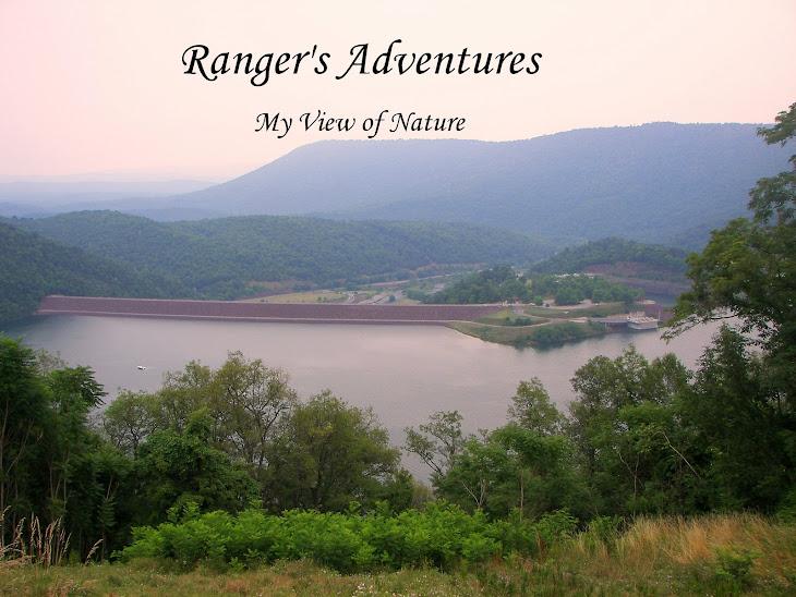 Rangers Adventures