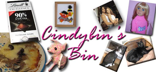 Cindybin