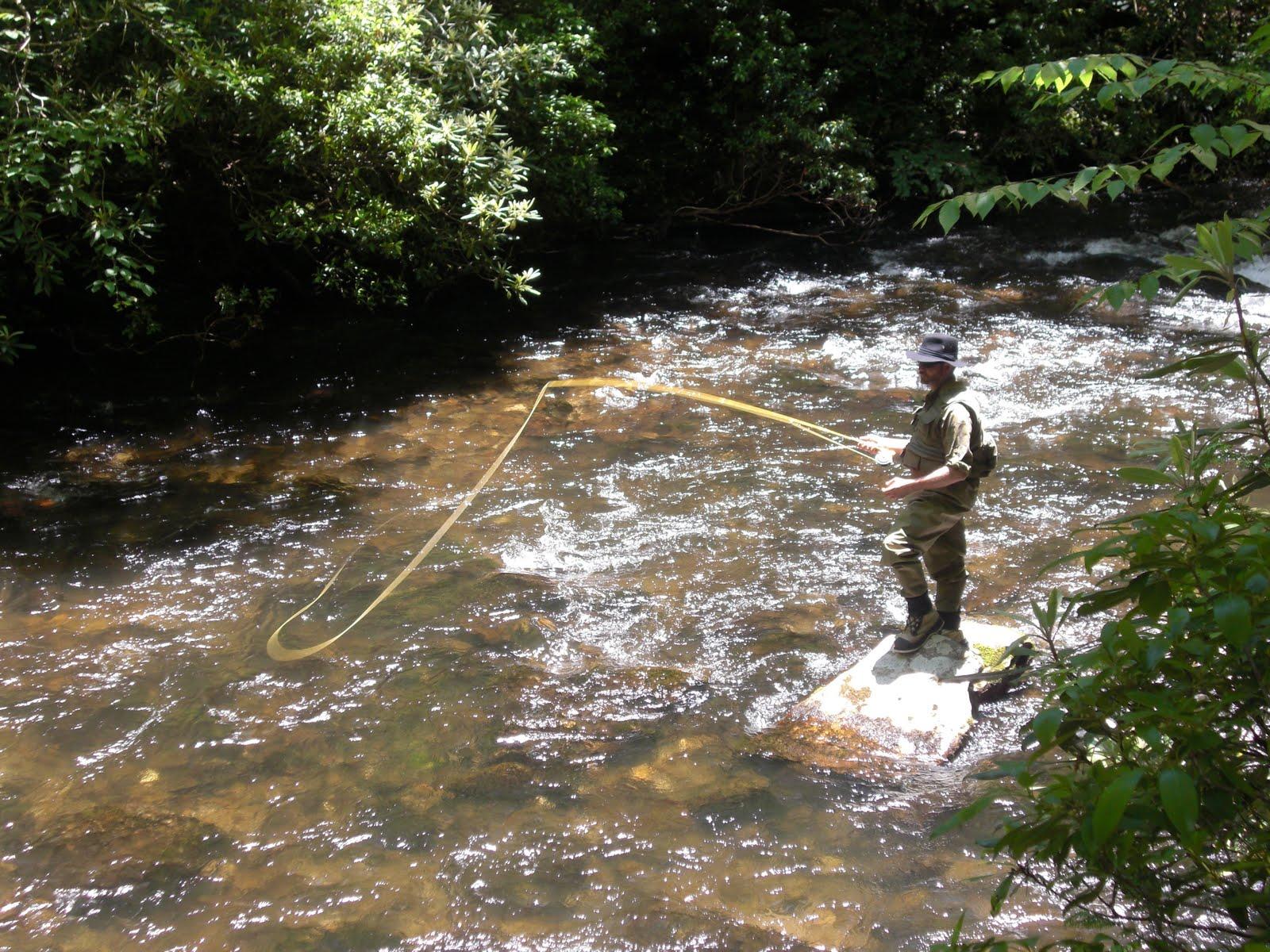 Lowcountry outdoors fly fishing hazel creek n c for Fishing in nc